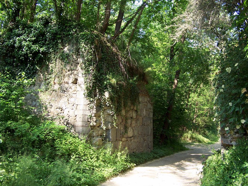 ponte nei boschi tra Cascina Lavandai e la strada Golasecca-Sesona