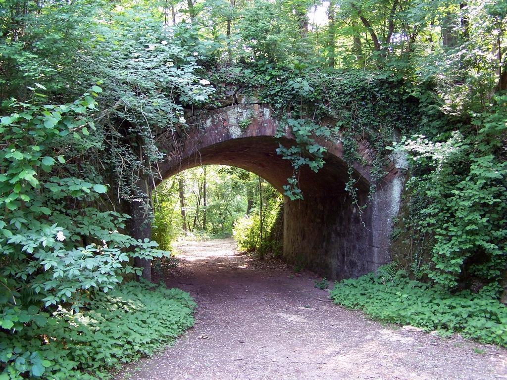 Ponte nel tratto tra Somma Lombardo e Sesona